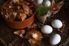 Oeufs blancs dans une boîte avec une peau jaune d'oignon dans un plat sur un plateau en osier images stock