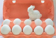Oeufs blancs organiques dans la boîte à oeufs Fin vers le haut Images libres de droits