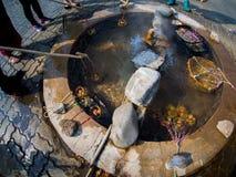 Oeufs bouillis dans les paniers à la source thermale photos libres de droits