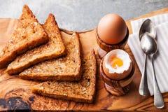 Oeufs bouillis pour le déjeuner Image libre de droits