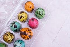 Oeufs brillamment colorés dans la boîte Image libre de droits