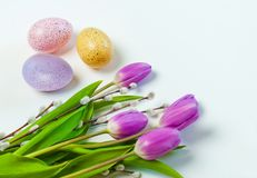 Oeufs colorés avec des tulipes sur le fond blanc Pâques, vacances de ressort images libres de droits