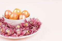 Oeufs colorés d'un plat photos stock