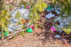 Oeufs colorés dans la chasse d'oeufs de forêt : activité traditionnelle de famille le jour de Pâques Photos libres de droits
