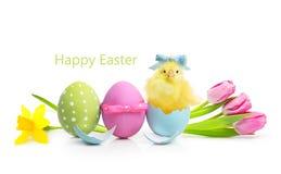 Oeufs colorés de Pâques avec des fleurs Images stock