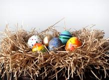 Oeufs colorés de Pâques dans le nid sur le fond blanc Photos libres de droits