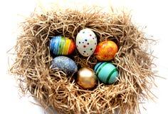 Oeufs colorés de Pâques dans le nid sur le fond blanc Photographie stock libre de droits