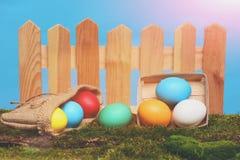 Oeufs colorés peints de Pâques à la barrière en bois sur la mousse verte Images libres de droits