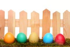 Oeufs colorés peints de Pâques sur la barrière en bois avec de la mousse verte Images stock