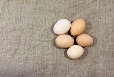 Oeufs crus de poulet Photo libre de droits