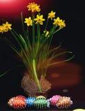 Oeufs décorés des fils et des perles lumineux de couleur avec des jonquilles Photos stock