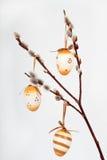 Oeufs décoratifs Photo libre de droits