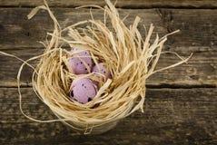 Oeufs décoratifs dans le nid, blured Images stock