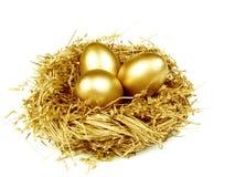Oeufs d'or dans l'emboîtement d'or Image libre de droits