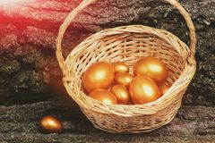 Oeufs d'or traditionnels de Pâques dans le panier sur le bois, antiquité Photos libres de droits