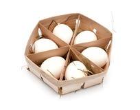 Oeufs dans la boîte d'eco Image stock