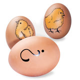 Oeufs de Brown décorés de la peinture de main de petits poulets et point d'interrogation Photographie stock