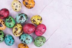 Oeufs de caille brillamment colorés Images libres de droits