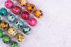 Oeufs de caille colorés dans la boîte Image libre de droits