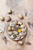 Oeufs de caille décorés de la plume Aliment biologique Type rustique Vue supérieure Image stock