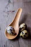 Oeufs de caille dans des cuillères en bois Photographie stock libre de droits