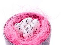 Oeufs de caille dans le nid rose de sisal dans la boîte en métal sur blanc, carte de Pâques images libres de droits