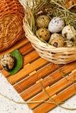 Oeufs de caille dans le panier Pâques délicatesse Photos libres de droits