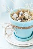 Oeufs de caille dans le pot de couleur de turquoise avec la corde Image stock