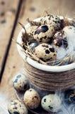Oeufs de caille dans le pot de Pâques Photos stock