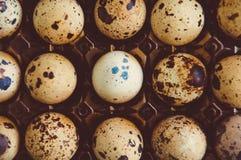 Oeufs de caille dans le récipient Photo stock
