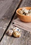 Oeufs de caille dans une cuvette en bois sur un fond gris Image stock