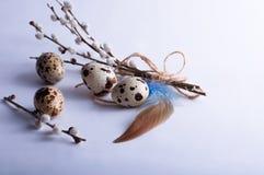 Oeufs de caille de Pâques sur le blanc Images libres de droits