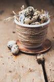 Oeufs de caille dedans dans un pot avec la paille Images libres de droits