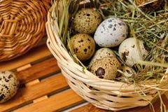 Oeufs de caille diététiques dans un panier Pâques Photos libres de droits