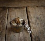 Oeufs de caille et brindilles frais de saule sur un fond en bois photographie stock