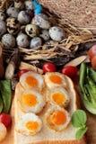 Oeufs de caille et oeufs sur le plat de caille de délicieux Images libres de droits