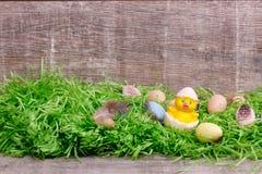 Oeufs de caille de Pâques sur une herbe verte devant un fond en bois Copiez l'espace Images stock
