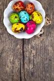 Oeufs de caille peints Photo libre de droits