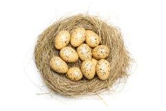 Oeufs de caille sur le nid de paille Image libre de droits