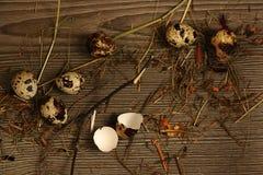 Oeufs de caille sur un en bois Images stock
