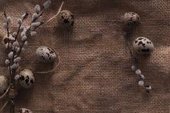 Oeufs de caille sur un textile Photographie stock