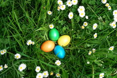 Oeufs de chasse à Pâques dans le pré Photo libre de droits