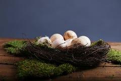 Oeufs de ferme dans un petit nid Photos libres de droits