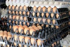 Oeufs de ferme de poulet dans le paquet qui a préservé pour la vente Photographie stock