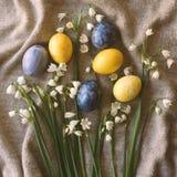 Oeufs de fleurs et de pâques images stock