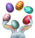 Oeufs de lapin de Pâques Photos libres de droits