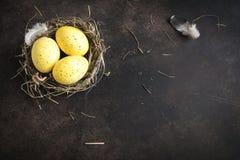 Oeufs de pâques Photographie stock libre de droits