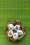 Oeufs de pâques Photos libres de droits