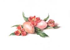 Oeufs de pâques avec des fleurs