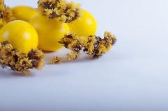 Oeufs de pâques avec des fleurs sur un fond blanc Photo libre de droits